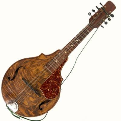 instrument_mandolin
