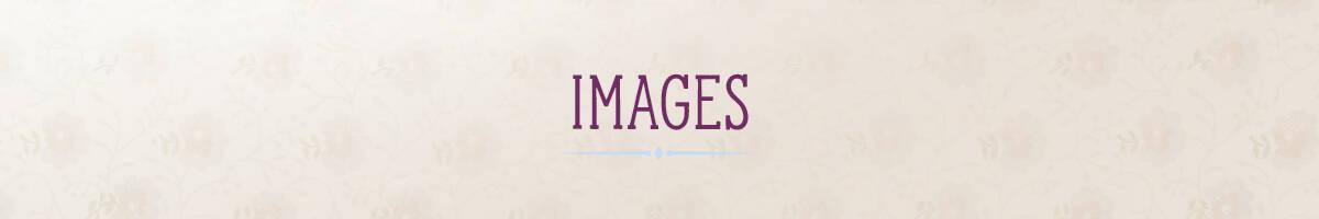 SCH_Loretta_WebGraphics-PortalHeader_18_images