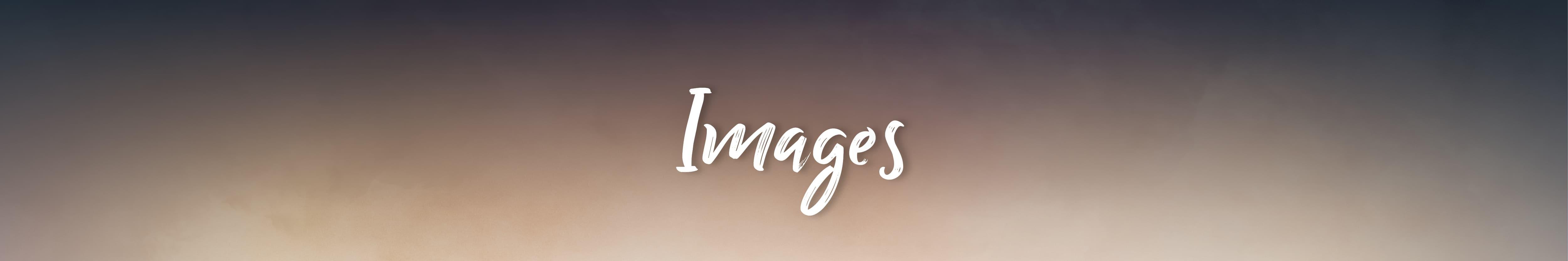 SCH_Shania_WebGraphics-PortalHeader_18_Images